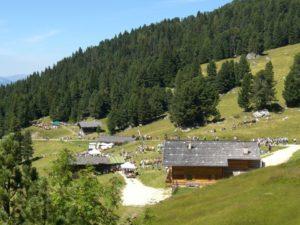 Festa delle malghe a Obereggen