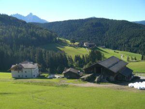 Vista sui prati, boschi e le montagne d'intorni