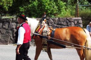 Cavallo tipico con decorazioni festive con accompagnatore