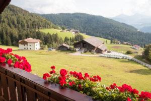 Balcone con fiore e panorama alpino