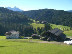Berglandschaft hinter Wald und Wiesen