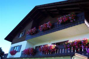 Fassade mit blühenden Blumen