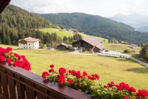 Wald- Wiesen und Berglandschaft hinter Blumen-bestücktem Balkon